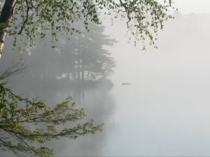 A veil of mist drifts past Echo Island